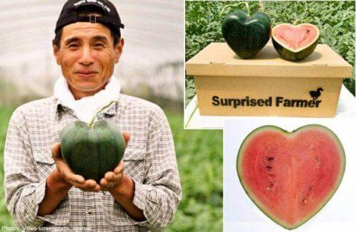 inovasi jepang